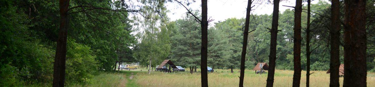 Po ścieżkach Kampinoskiego Parku Narodowego